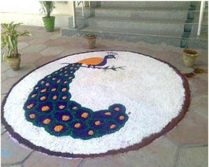 Classical Peacock Rangoli Designs