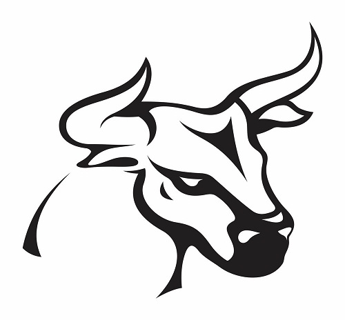 Best Bull Tattoo Designs With Meanings For Men & Women-edited14