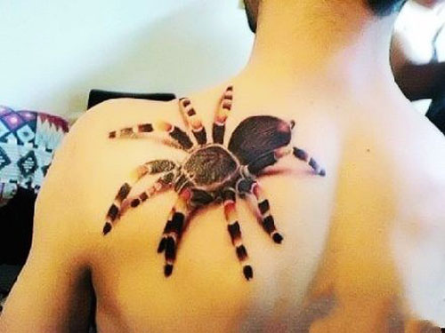 Realistic looking spider