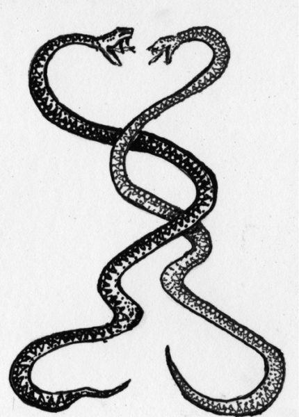 A romantic intertwined snake tattoo