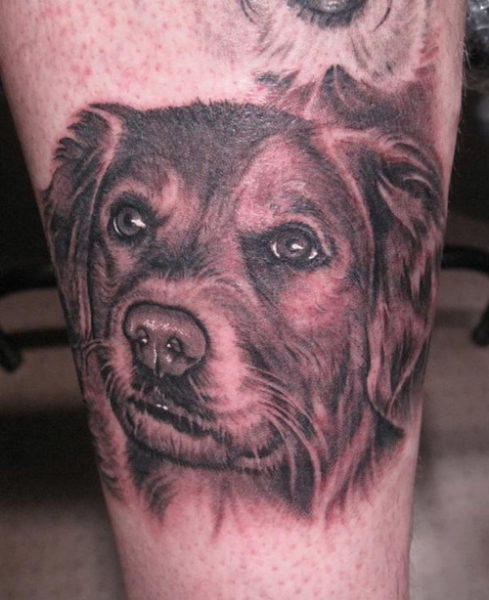 Pet Dog Tattoo