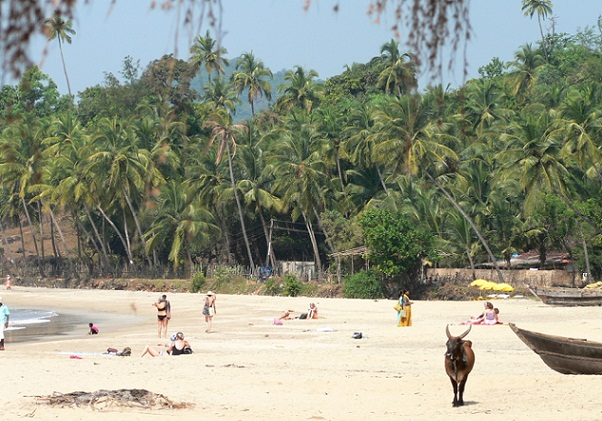 The Best Beaches in Goa-Patnem Beach