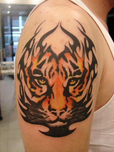 Tiger Tribal  Shoulder Tattoo