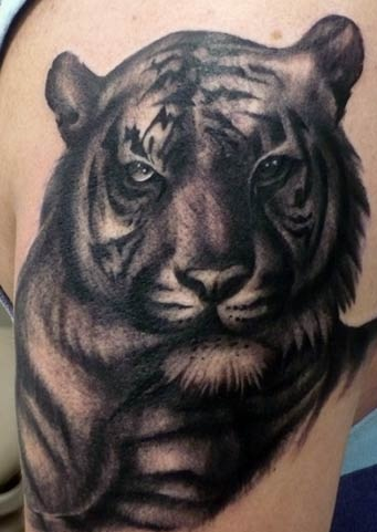 black-tiger-tattoos10