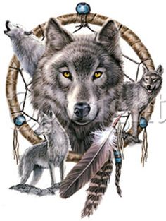 Dream catcher wolf tattoo