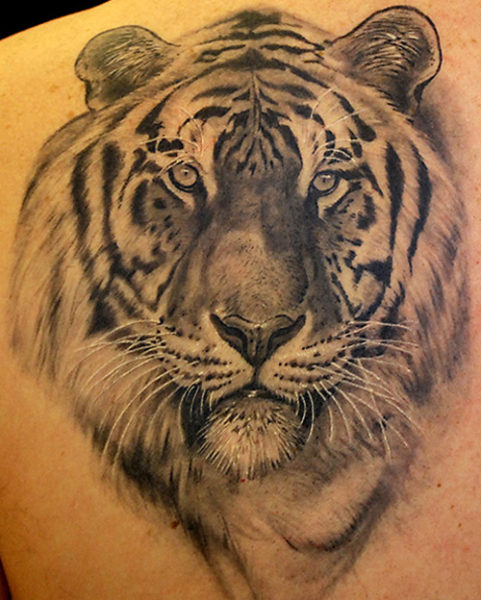 15 best tiger tattoo designs and meanings with images for Tiger tattoo face