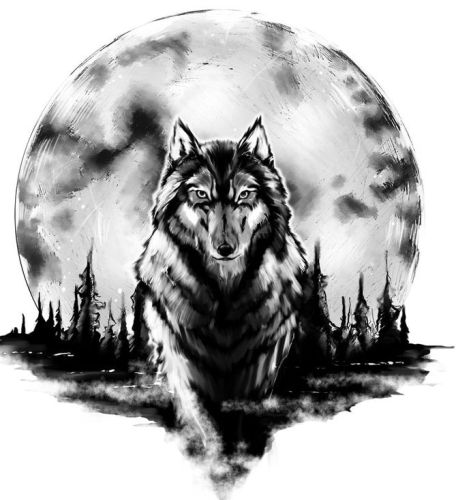 Moon and the wolf