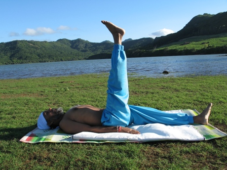 Half Plough Pose - Ardha Halasana Benefits for Health