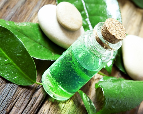 Best Beauty Tips for Pimples - Tea Tree Oil