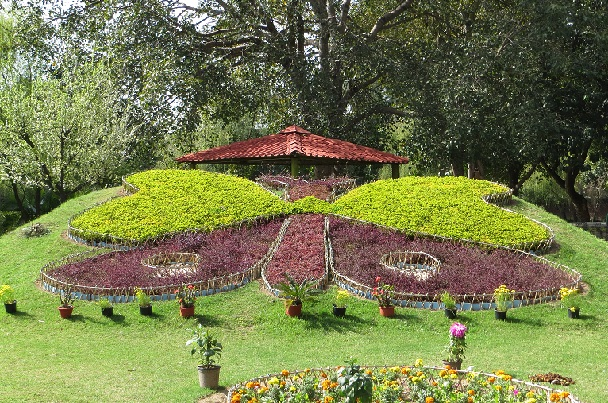 butterfly-park_chandigarh-tourist-places