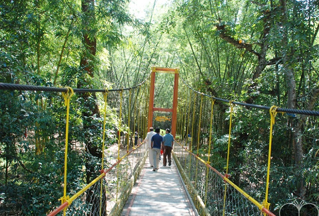 15 Amazing Tourist Places In Coorg To Visit   Styles At Life