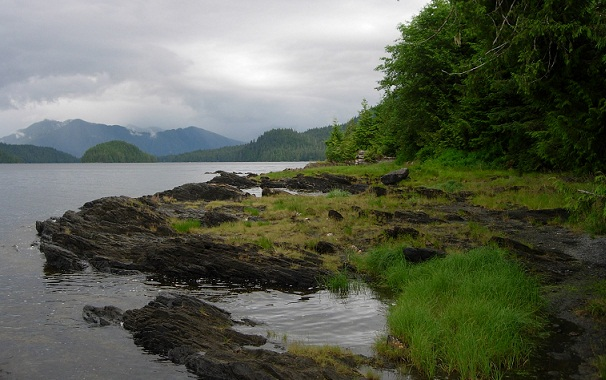 Famous Forest Camping Grounds-Tongass National Forest, Alaska