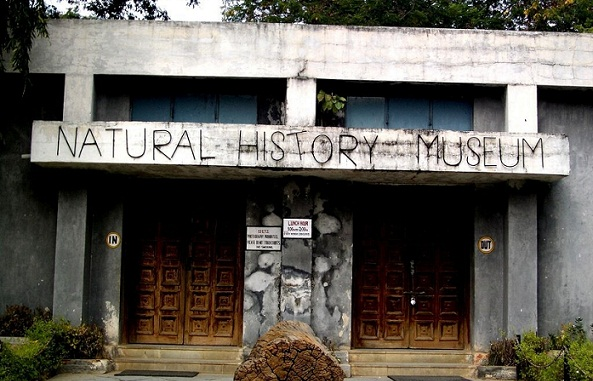 Famous Museums in Hyderabad-Natural History