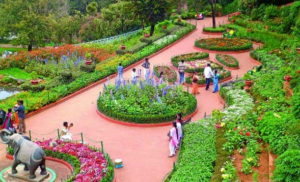Famous Parks in Ooty-Botanical Gardens