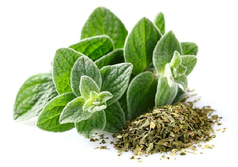 Greek Beauty Tips and Secrets-Eating oregano