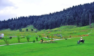 Honeymoon Places in Kashmir-Srinagar