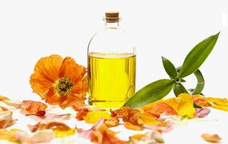Japanese Beauty Tips and Secrets-Camellia Oil