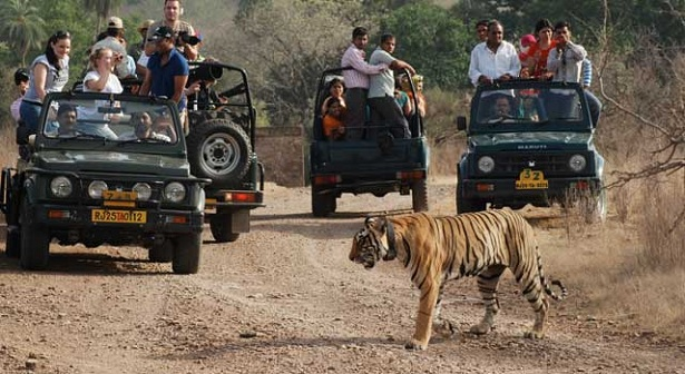 jim-corbett-national-park_nainital-tourist-places