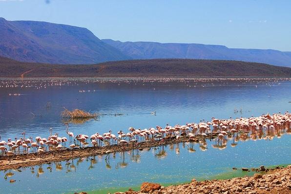 lake-nakuru_kenya-tourist-places