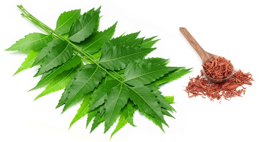 Neem and sandalwood