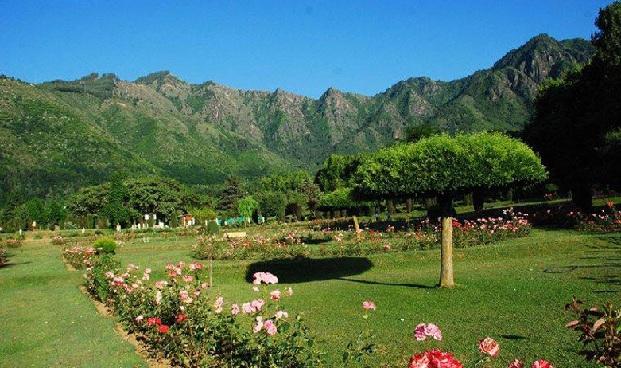 nehru-botanical-garden_sikkim-tourist-places