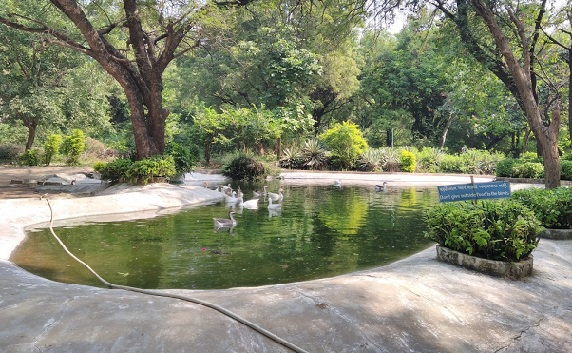 parks-in-ahmedabad-indroda-nature-park