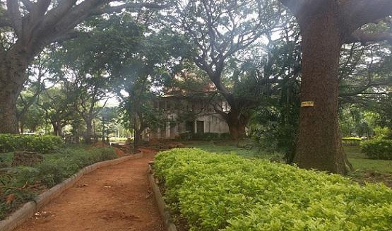 parks-in-bangalore-m-n-krishna-rao-park