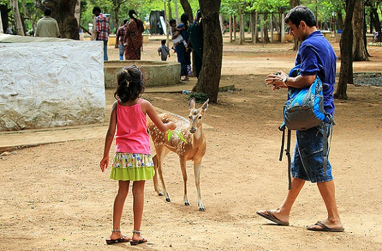 parks in chennai