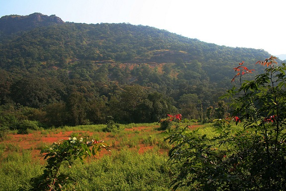 parks-in-goa-mollem-national-park