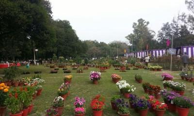 parks-in-ludhiana-nehru-rose-garden