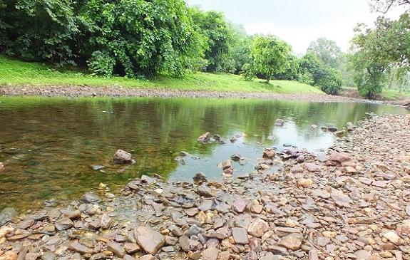 parks-in-vadodara-jambughoda-wildlife-sanctuary