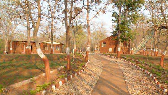 parks-in-vadodara-vadhvana-wetland-and-eco-campsite