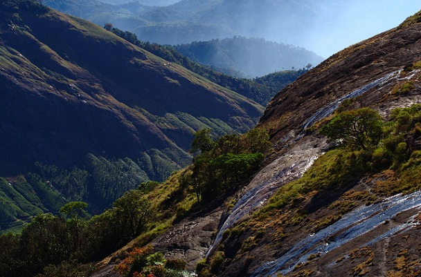 rajamala_munnar-tourist-places