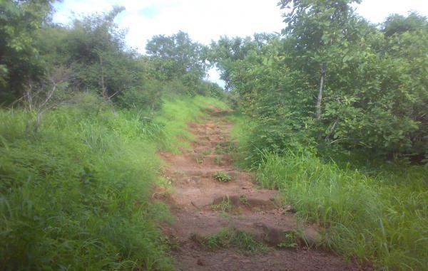 ralamandal-wildlife-sanctuary_indore-tourist-places