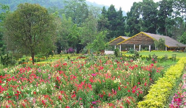 saramsa-garden_sikkim-tourist-places