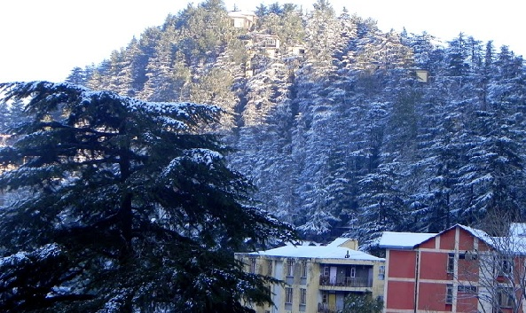 summer-hill_shimla-tourist-places