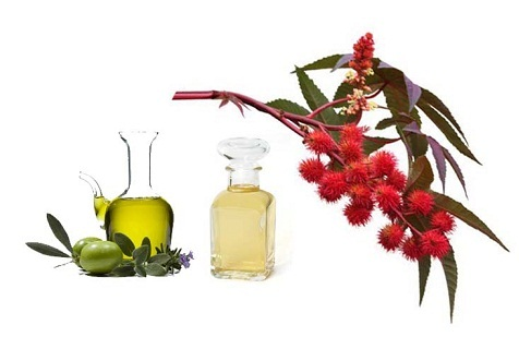 castor oil and olive