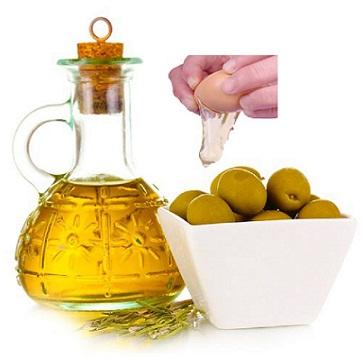 olive oil copy