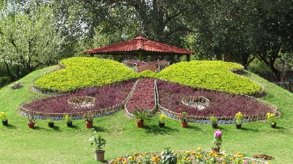 parks-in-chandigarh-butterfly-park