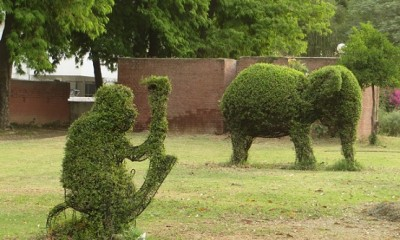 parks-in-chandigarh-topiary-park