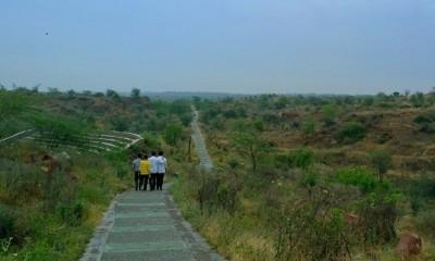 parks-in-gurgaon-arrival-biodiversity-park
