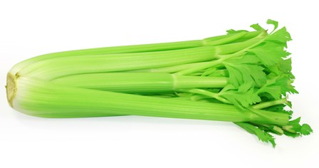 celery-during-pregnancy