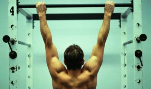 pull ups exercises