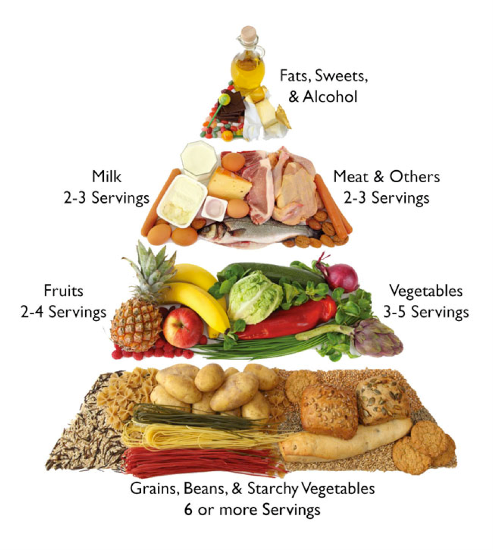 Things to include in balanced diet