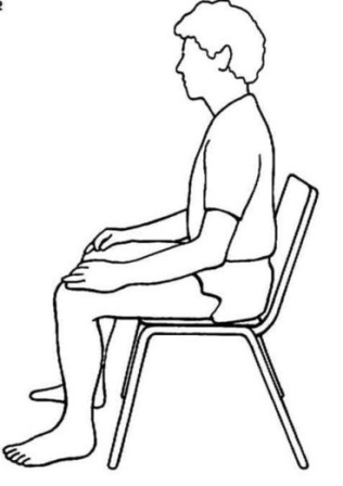 Deep Meditation besides Straight Leg Stretch furthermore 233966 Cute Girl With Cat Sitting In Chair likewise Acrosport in addition Beach attire. on sitting yoga styles