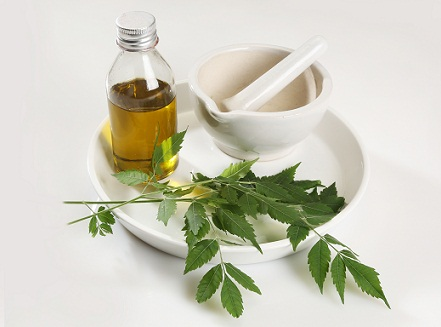 Homemade Tips For Long Hair - Neem Oil