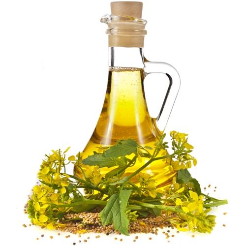 Mustard Oil Benefits For Hair