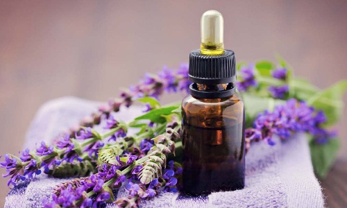 Natural Oils for Hair Growth - Clary Sage