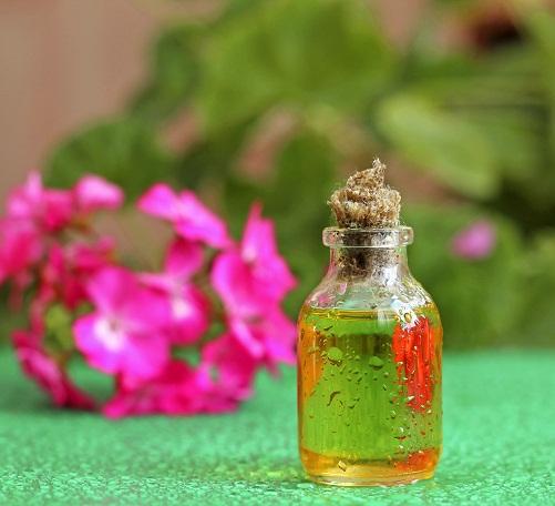 Natural Oils for Hair Growth - Geranium