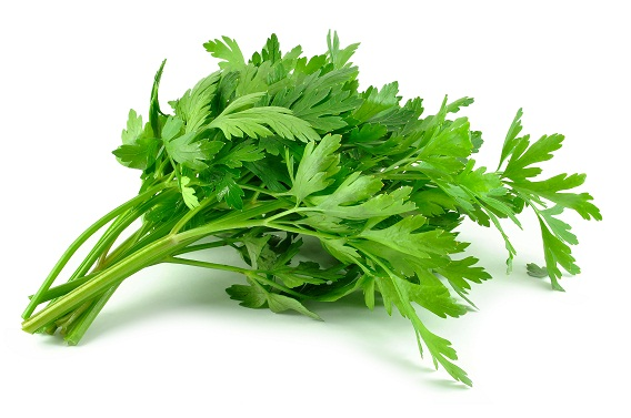 Parsley Leaves